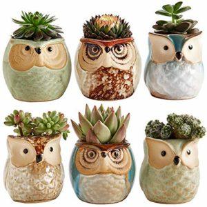 Sun-E 2.5 Inch Owl Pot Ceramic Flowing Glaze Base Serial Set Succulent Plant Pot Cactus Plant Pot Flower Pot Container Planter Bonsai Pots with A Hole Perfect Gift Idea 6 in Set image